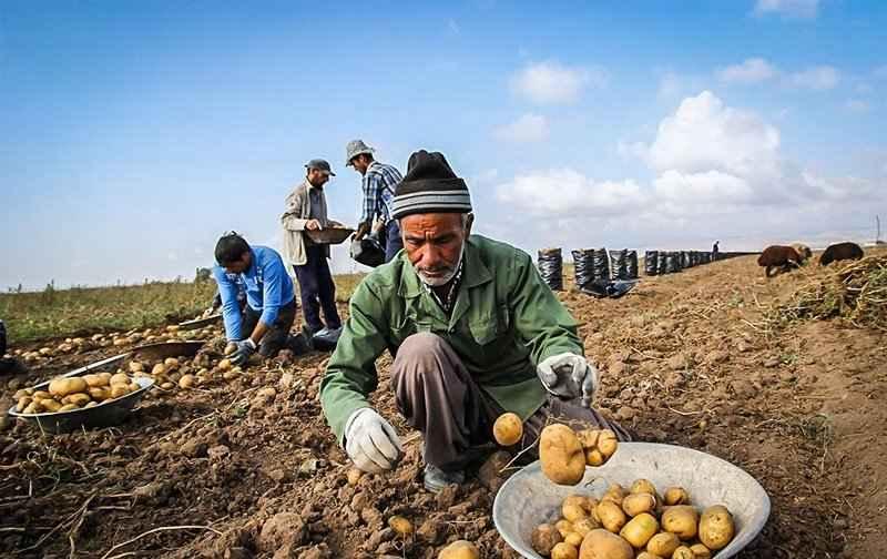 150 میلیارد ریال تسهیلات اشتغالزایی به روستائیان آبدانان پرداخت شد