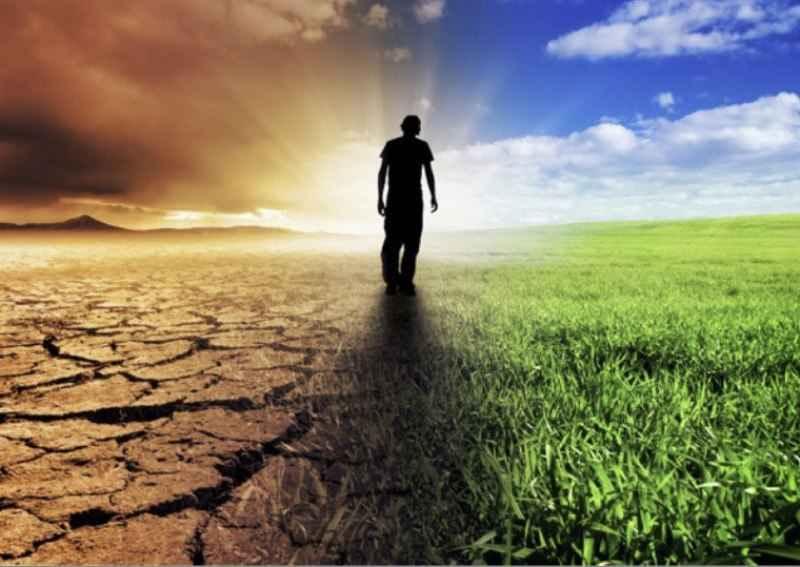 تغییرات اقلیمی و کوچ گونه های گیاهی