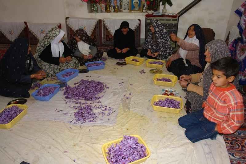 تحکیم امنیت ملی کشور در گرو توانمندسازی زنان روستایی است